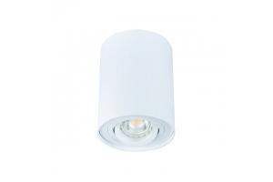 Светильник накладной точечный поворотный BORD DLP-50-W