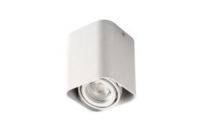 Светильник накладной точечный поворотный TOLEO DTL50-W