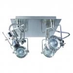 Светильник настенно-потолочный SONDA EL-4L
