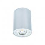 Светильник накладной точечный поворотный BORD DLP-50-AL